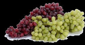 A grape cluster