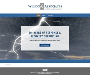 Wilson & Associates Consulting, LLC, home page screenshot
